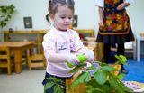Детский сад Мир детства, фото №5